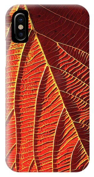 Vibrant Viburnum IPhone Case