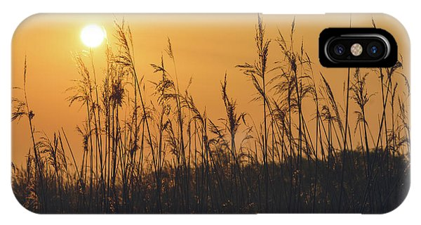 IPhone Case featuring the photograph View Of Sun Setting Behind Long Grass A by Jacek Wojnarowski