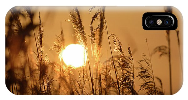 View Of Sun Setting Behind Long Grass B IPhone Case