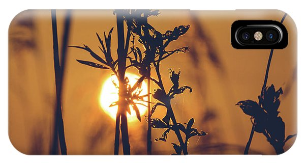View Of Sun Setting Behind Long Grass D IPhone Case