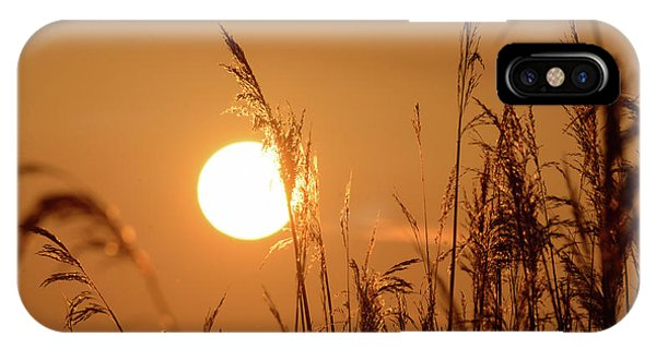 IPhone Case featuring the photograph View Of Sun Setting Behind Long Grass E by Jacek Wojnarowski