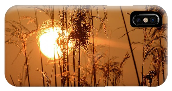 IPhone Case featuring the photograph View Of Sun Setting Behind Long Grass F by Jacek Wojnarowski