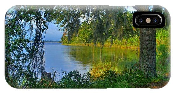 View Under The Spanish Moss IPhone Case