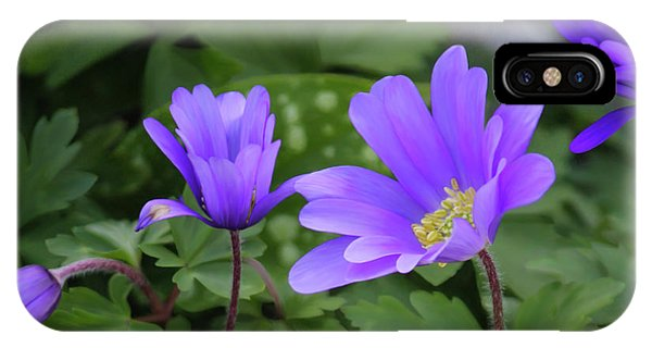Vinca In The Morning IPhone Case