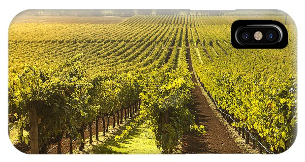 Vineyard In Napa Valley IPhone Case