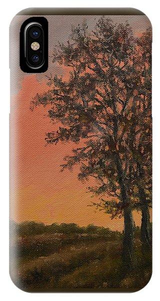 Vineyard Sundown IPhone Case