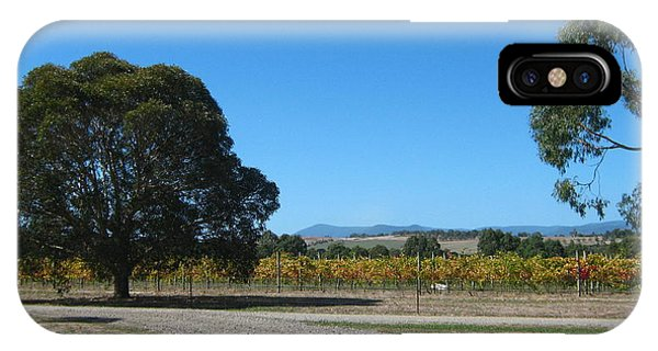 Vineyard Trees IPhone Case
