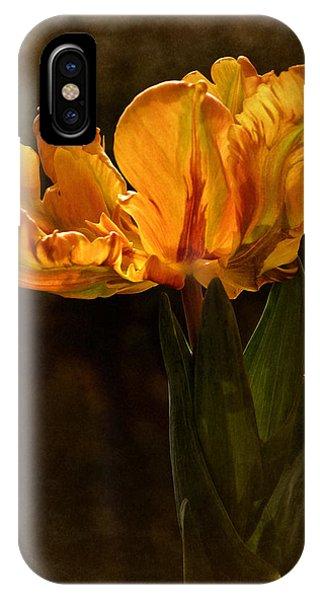 Vintage 2017 Tulip IPhone Case