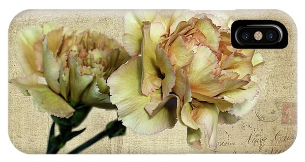 Vintage Carnations IPhone Case