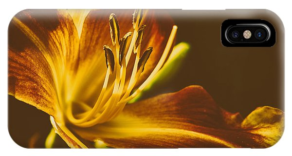 Assisted Living iPhone Case - Vintage Lily by James Shinn