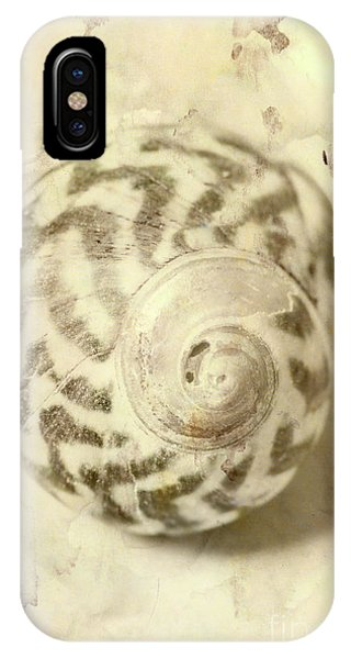 Nautical iPhone Case - Vintage Seashell Still Life by Jorgo Photography - Wall Art Gallery