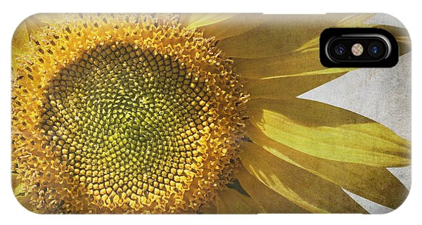 Floral iPhone Case - Vintage Sunflower by Jane Rix