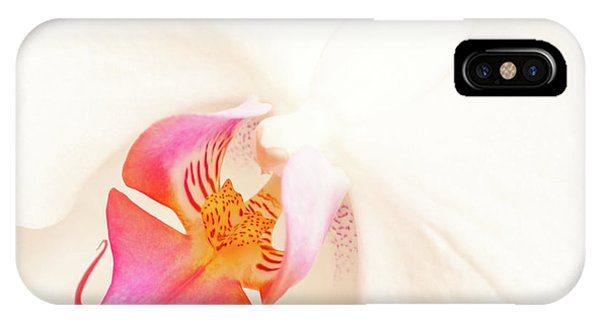 Pistil iPhone Case - White Orchid by Delphimages Photo Creations