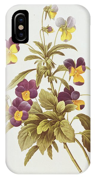 Botanical iPhone Case - Viola Tricolour  by Pierre Joseph Redoute