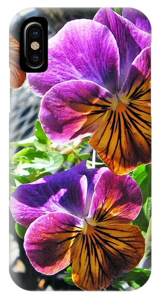 Violas IPhone Case
