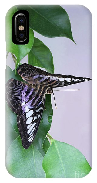 Violet Clipper Butterfly V2 IPhone Case