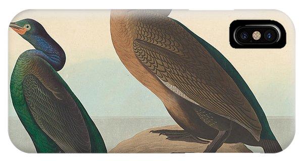 Violet iPhone Case - Violet Green Cormorant And Townsend's Cormorant by John James Audubon