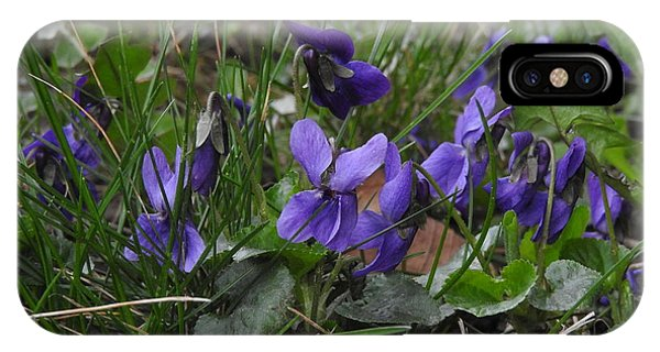 Violets IPhone Case