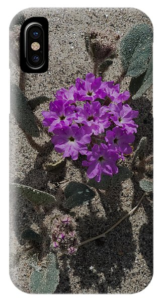 Violets In The Sand IPhone Case
