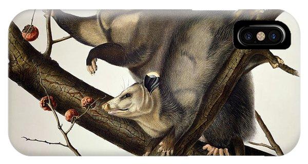 1851 iPhone X Case - Virginian Opossum by John James Audubon
