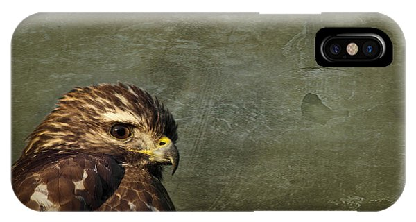 Osprey iPhone Case - Visions Of Solitude by Evelina Kremsdorf