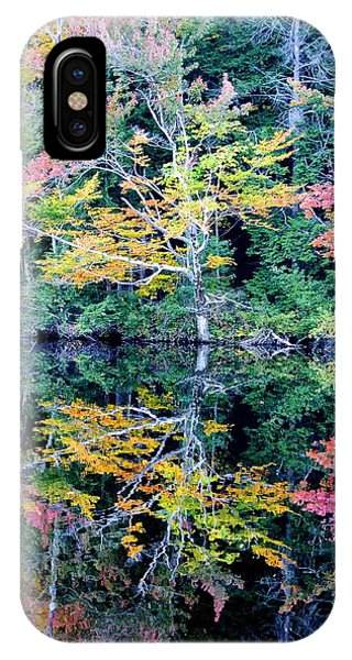 Vivid Fall Reflection IPhone Case
