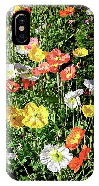 Vivid Mix Of California Poppies IPhone Case