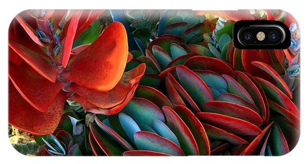 Vivid Paddle-leaf Succulent IPhone Case