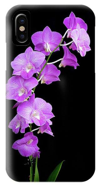 Vivid Purple Orchids IPhone Case