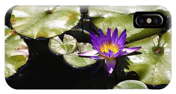 J Paul Getty iPhone Case - Vivid Purple Water Lilly by Teresa Mucha