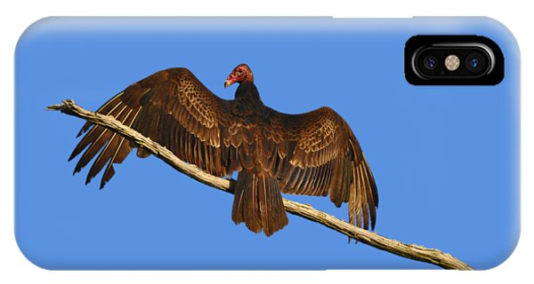 Vivid Vulture .png IPhone Case