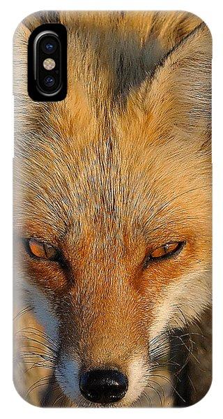 Vixen IPhone Case