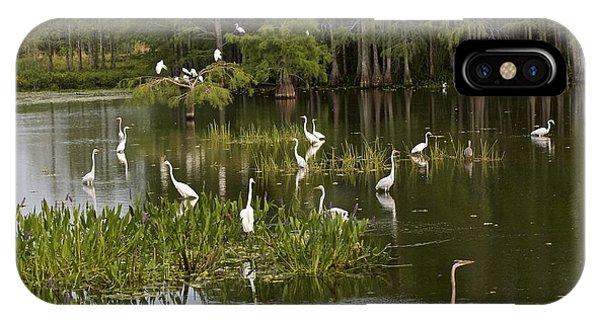Wading Birds IPhone Case