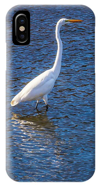 Wading In The Bay IPhone Case