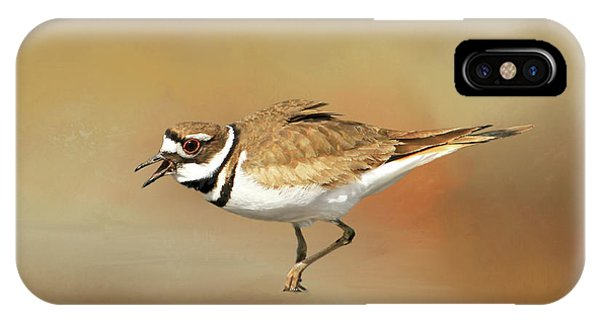 Killdeer iPhone Case - Wading Killdeer by Donna Kennedy