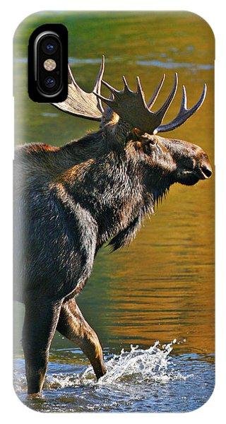 Wading Moose IPhone Case