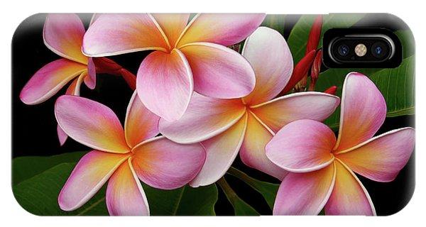Wailua Sweet Love Texture IPhone Case