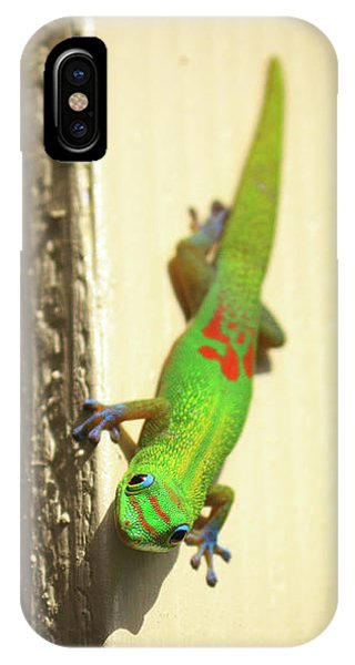 Waimea Gecko IPhone Case
