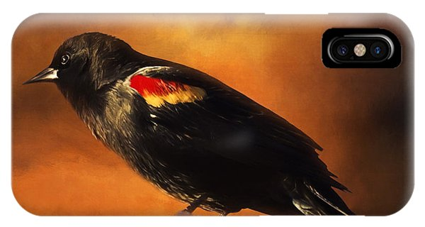 Waiting - Bird Art IPhone Case