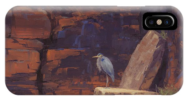 Canyon iPhone Case - Waiting by Cody DeLong