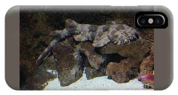 Waiting To Eat You - Spotted Wobbegong Shark IPhone Case