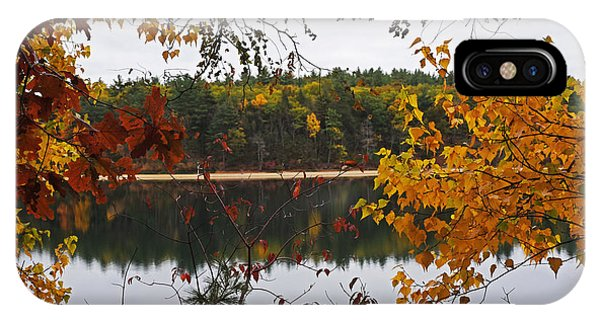 Walden Pond Fall Foliage Leaves Concord Ma IPhone Case