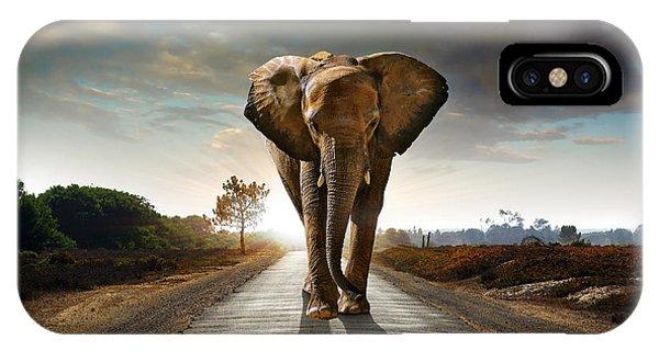 Walking Elephant IPhone Case