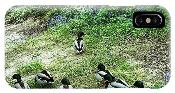#walks #woodland #wildlife #cute Phone Case by Natalie Anne