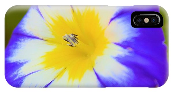Wallflower IPhone Case