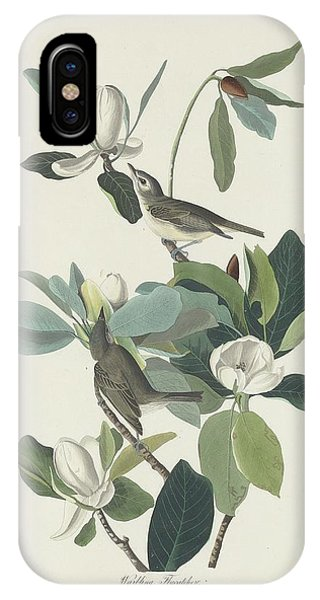 Warbling Flycatcher IPhone Case