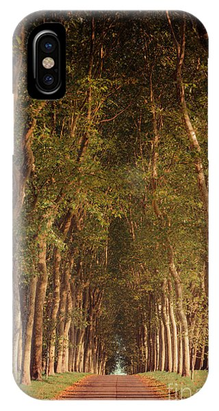 Warm French Tree Lined Country Lane IPhone Case
