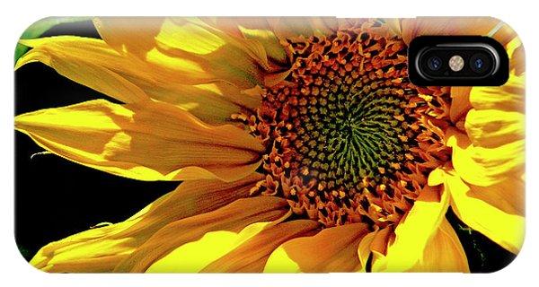 Warm Welcoming Sunflower IPhone Case