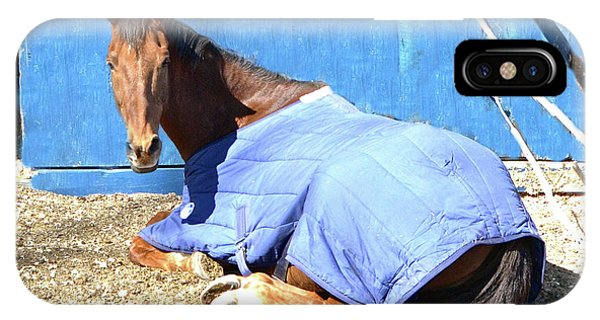 Warm Winter Day At The Horse Barn IPhone Case