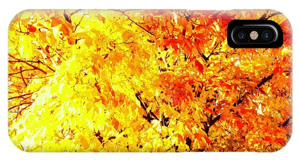 Warmth Of Fall IPhone Case